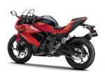 Ninja 250RR Mono 13